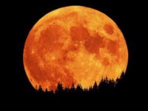 moon-is-tonight
